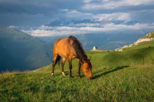 Горы, Дагестан