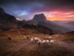 Калым гуляет в горах Дагестана