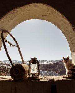 Идиллия в горах Дагестана