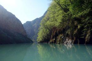 Эффект зеркала, деревья в воде